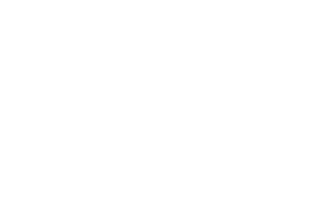 Lisa Haven News