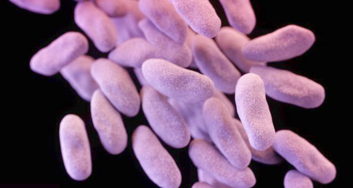 Pandemic Alert: DANGEROUS Untreatable SUPERBUG Rises In America!
