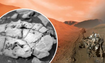 Frenzy Sparked As Scientists Wrestle Over 'New Freak Discover' on Red Planet…