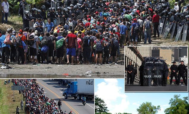 The Truth About the Migrant Caravan Leaked—What They've Been Purposefully Hiding Has Surfaced