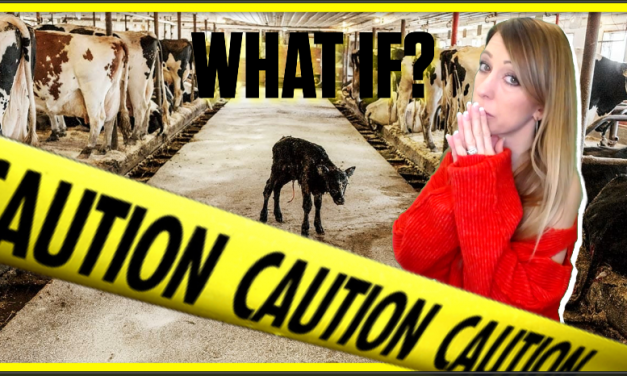 We're About To Pay a Severe Price: The FULL Collapse Of Dairy and Cattle Industry IS Now Underway!