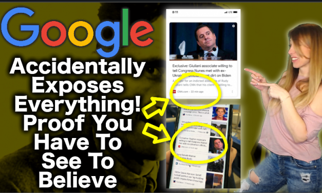 BUSTED! Google Just Accidentally Exposed Their Bait & Switch! Hurry Before It's Scrubbed!