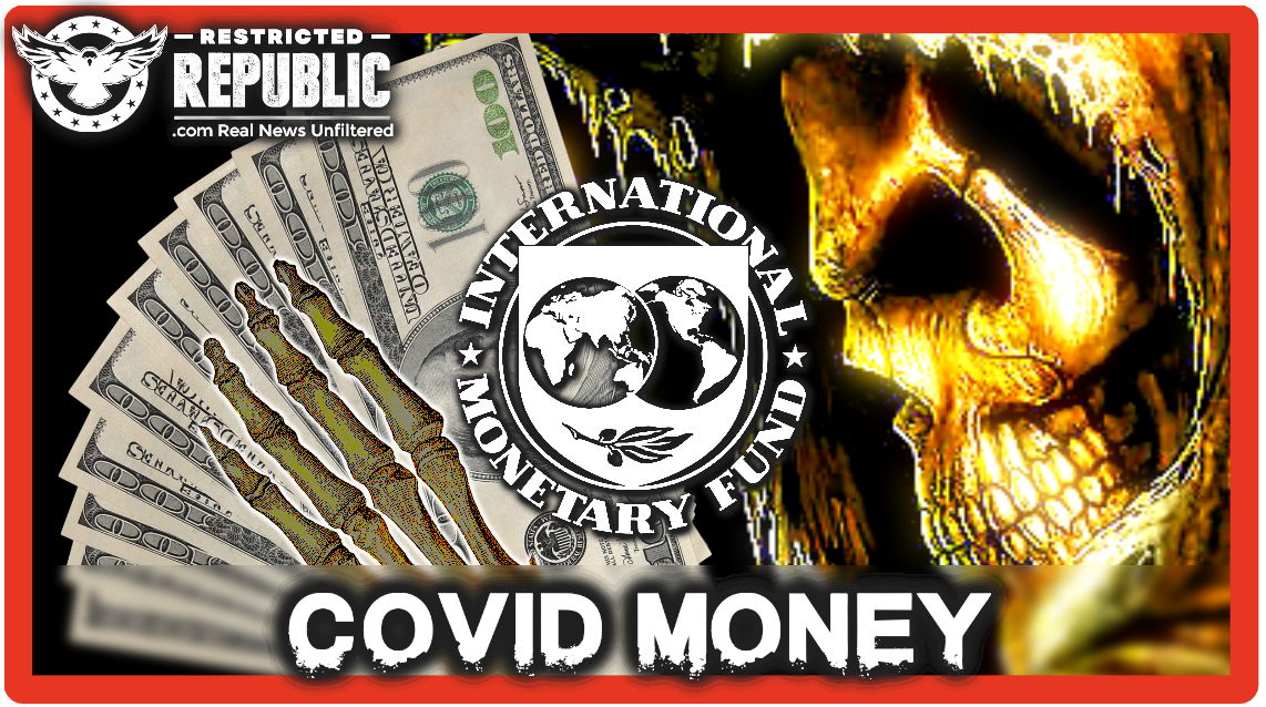 IMF & World Bank's COVID Aid Came With 'Death Conditions' As 147 'Super Entities' Call The Shots