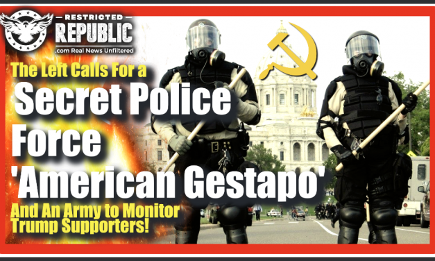 The Left Calls For a Secret Police Force—American Gestapo—& An Army To Monitor Trump Supporters…