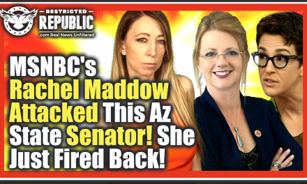 EXCLUSIVE Interview!  MSNBCs Maddow Attacked This AZ Senator – She Just Fired Back- Explosive Reply!